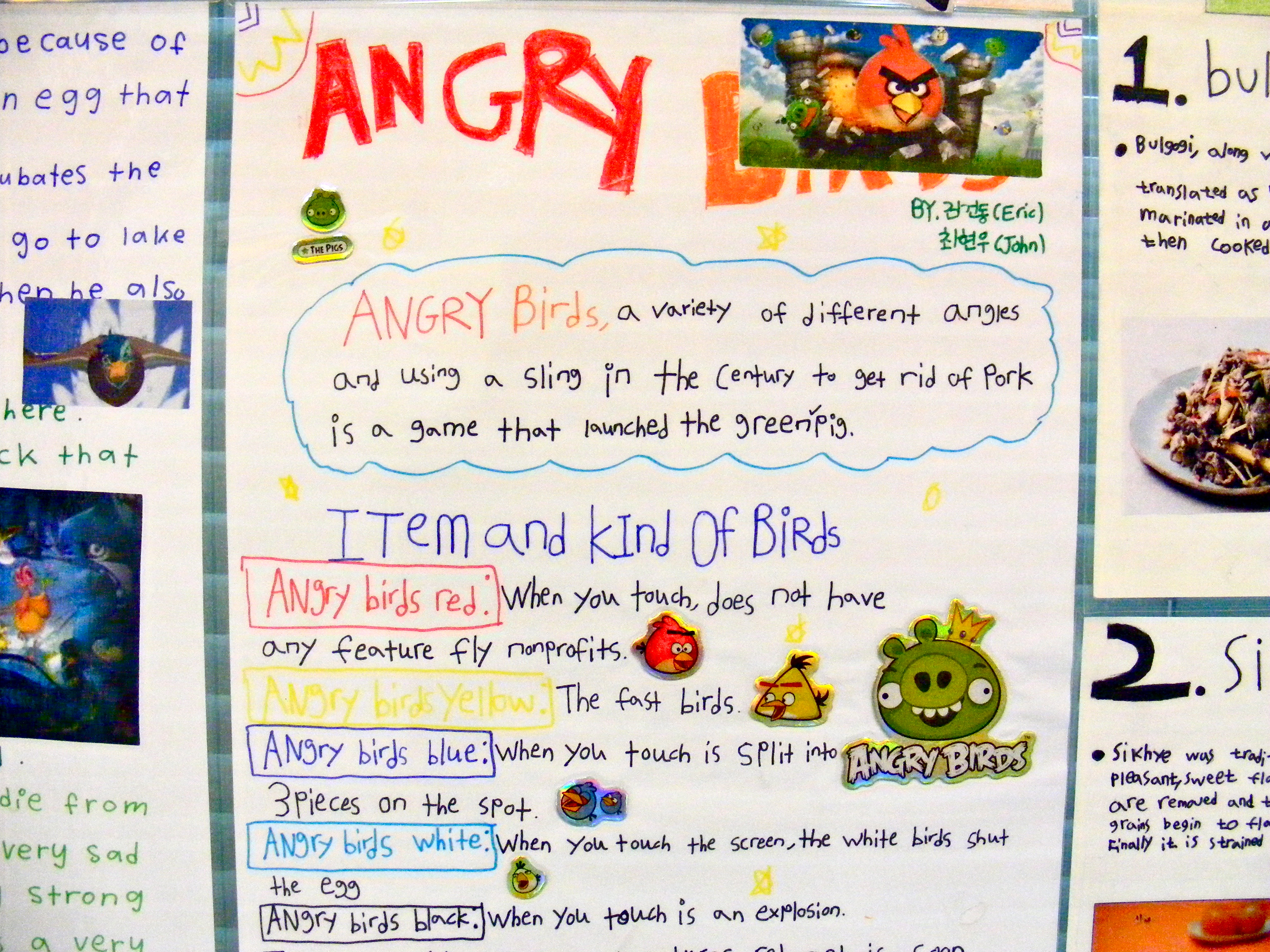 Obsessed-with-angry-birds