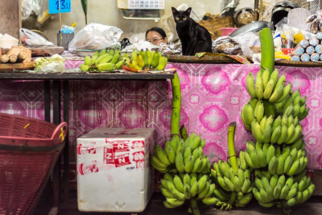 A four-leg guardian and a banana vendor make a great-synchronized couple at the market in Chiang Mai, Thailand: while one rests, the other takes care of the customers.