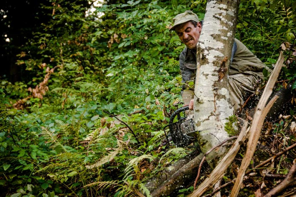 Serhiy, a lumberjack of the Carpathian Mountains in action. His work is one that is precise and demands thoughtfulness, decisiveness and... physical strength. His job extends far beyond counting the trees he cuts.