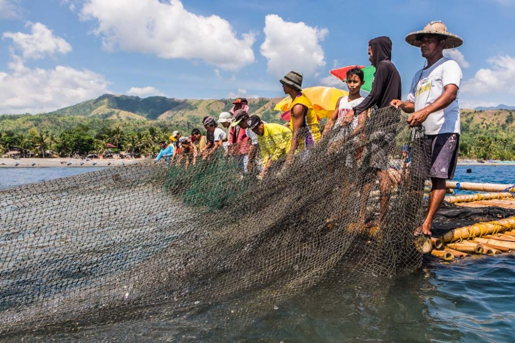 Three generations of fishermen during lambaklad fishing in Tibiao, Philippines, where they use an enormous, stationary fish trap that is the biggest in the country!