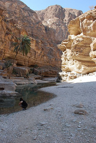 Wadi Shab by CC user doctoroflaws on Flickr